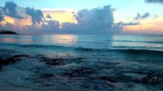 I see beauty, not everyone does -  Riviera Maya Mexico