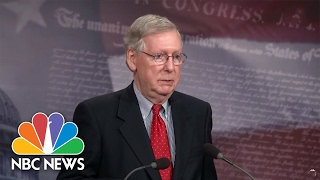 Mitch McConnell 'Not A Great Fan' Of President Donald Trump's Twitter Habit | NBC News
