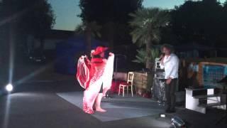 Soirée cabaret Camping Des Deux Plages à Saint Palais Sur mer