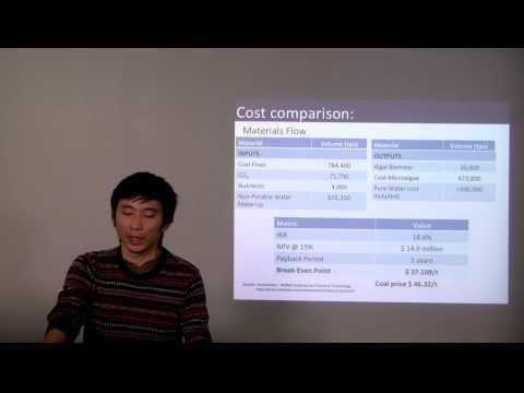 Coal-Microalgae Composite(FSC431)