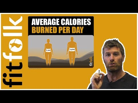 Average Calories Burned Per Day (Men & Women)