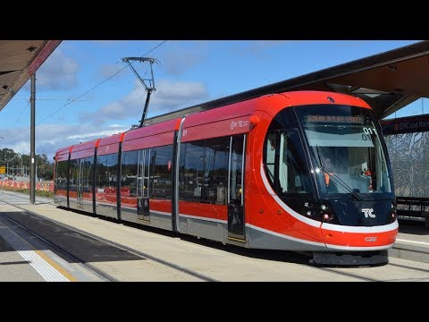 Trams on the new Canberra Light Rail - Canberra Metro