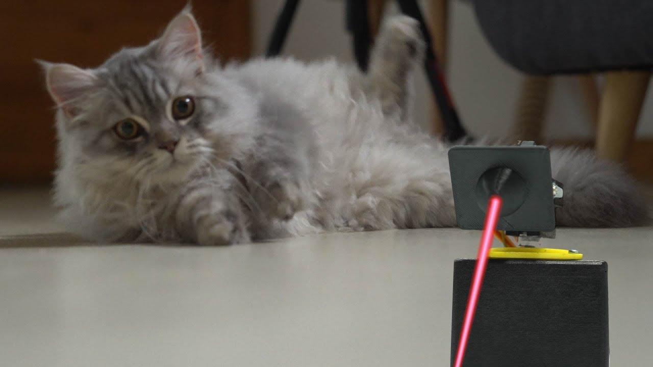 Circuito Io : Cat laser by circuito youtube