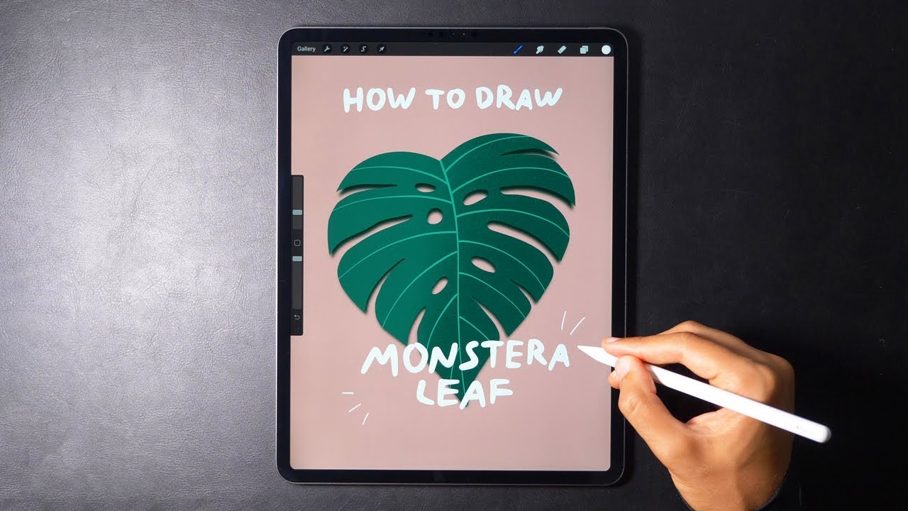 How to Draw a Monstera Leaf | Quick Tutorial ✨