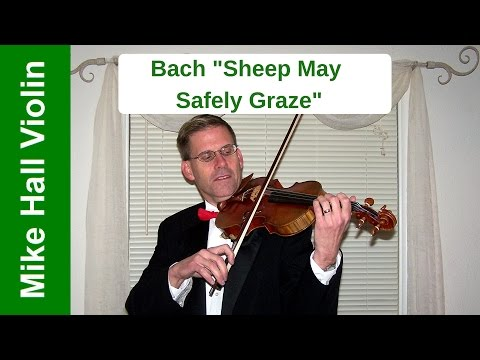Sheep May Safely Graze by J.S. Bach
