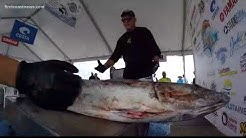 VIDEO: 38th annual Greater Jacksonville Kingfish Tournament