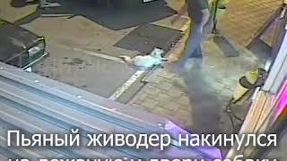 Ударил собаку об машину, но хозяин отомстил.