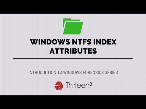 Windows NTFS Index Attributes ($I30 Files) - YouTube