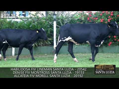 SANTA LUZIA   LOTE 98