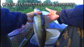 Ударил мотор об бревно Ловля судака на дорожку Троллинг на реке Рыбалка на судака и щуку