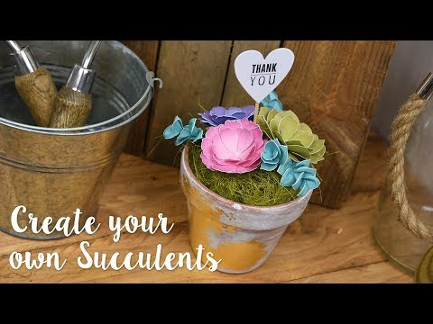 How to create beautiful Succulents with our very own Leanne!