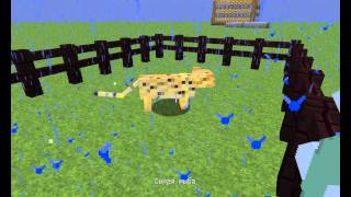 Майнкрафт как приручить животных