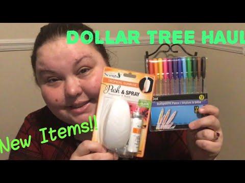 DOLLAR TREE HAUL   NEW ITEMS   MAY 24, 2018