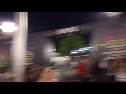 El brutal atentado en Niza en videos