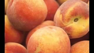 President Of United States Of America Peaches.wmv