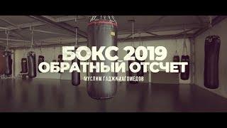 «Бокс 2019. Обратный отсчет». Муслим Гаджимагомедов