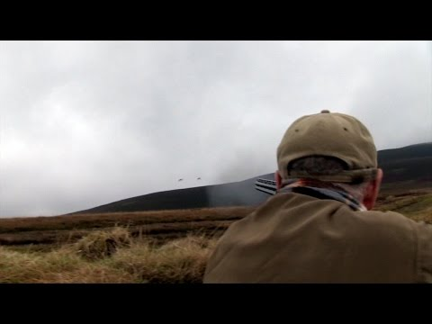 The Shooting Show – Guernsey guns shoot grouse PLUS the Brow
