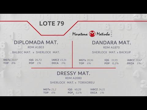 LOTE 79 Maratona Matinha