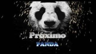 Panda - Ultimo diante a Crise (Designer )