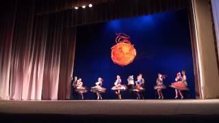 TDA Zelta sietiņš 55 gadu jubilejas koncerts 30.11.2013 - 00124