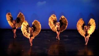 """Momix Bothanica """"HD"""" 2010 Naples Teatro Bellini 1"""