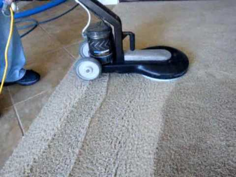 how to deep clean your carpet at home