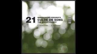 IV21 Culoe De Song - African Subway (The Bright Forest EP)