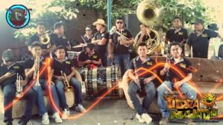 BANDA TIERRA MOJADA - EL SON DE LA RABIA 2015 -2016