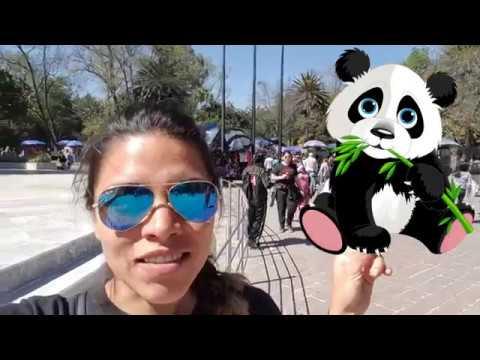 Visitando el zoologico de CHAPULTEPEC