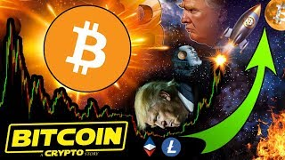 BITCOIN WARS! Donald Trump Just Opened Pandora's Box! WHAT NOW for Crypto?!? ????