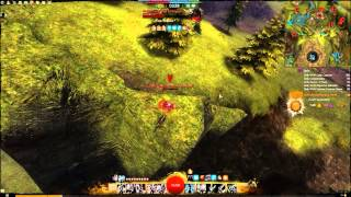 Guildwars 2 Beta in HD