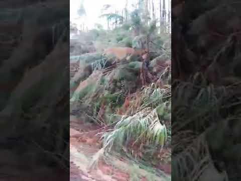 Vunisea road landslide - Citizen Journalist Video