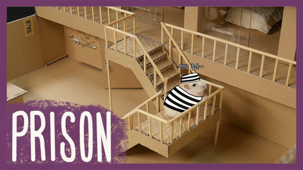 햄스터 콩이 감옥탈출 (Hamster KONG Prison break)