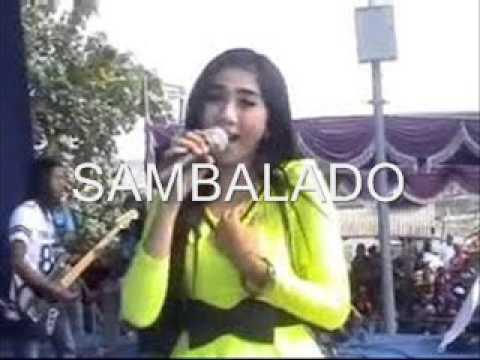 sambalado-fibri-viola-om-sera