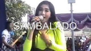 Video Sambalado - Fibri Viola - OM SERA download MP3, 3GP, MP4, WEBM, AVI, FLV Desember 2017