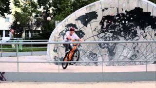 skatepark  Peter Kogler