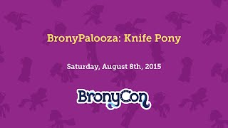 BronyPalooza: Knife Pony