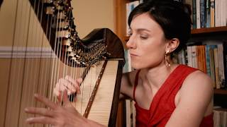 Jazz Harp 'Take Five' by Tamsin Dearnley on a Teifi Eos Harp