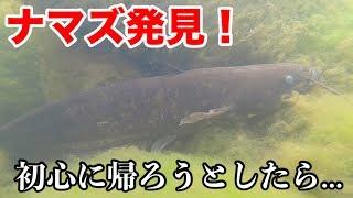 【初心に帰ろう】川を探索してたら巨大ナマズと遭遇してしまった!? thumbnail