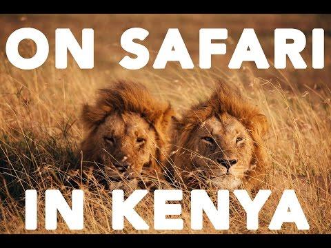 Photo Safari in Kenya! A Photographer In | Taylor Jackson