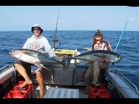 Gold Coast Yellowfin Tuna 09/2019
