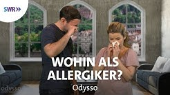 Hot-Spots der Allergien   SWR Odysso