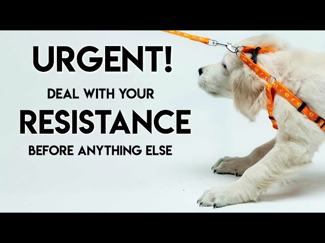 Urgent! Deal With Your Resistance Before You Do Anything Else - Teal Swan