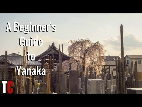 A Beginner's Guide to Yanaka