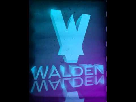 Ivan Gough & Feenixpawl feat. Georgi Kay -- In My Mind (Walden Remix)