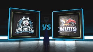 3BALL USA Showcase | Day 3: Quarterfinal #3 | Hungry Huskies vs  Magnificent Mutts