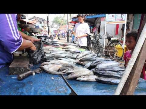Pasar Ikan (Fish Market), North Jakarta, Indonesia