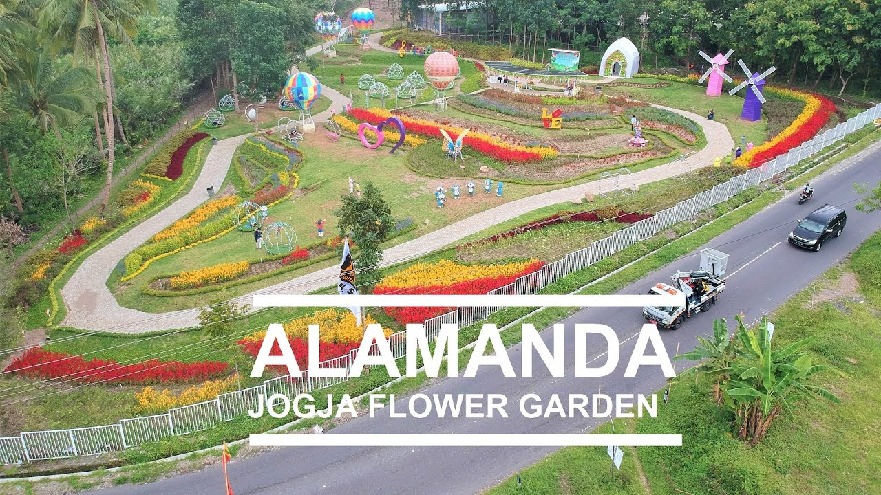 Wisata Taman Bunga Turi Sleman Alamanda Jogja Flower Garden Youtube