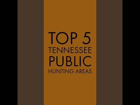Top 5 Tennessee Public Hunting Areas