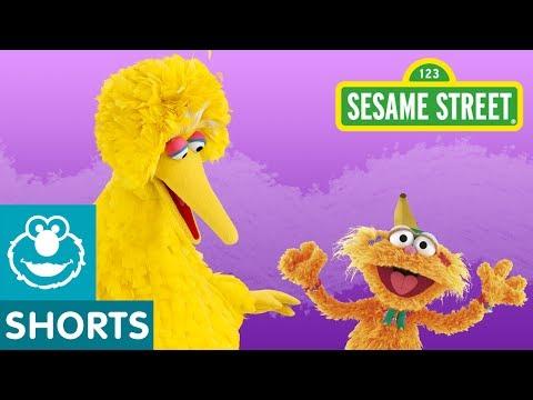 Sesame Street: Big Bird Asks Zoe A Question